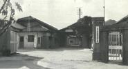 カネス製粉製麺株式会社として設立。